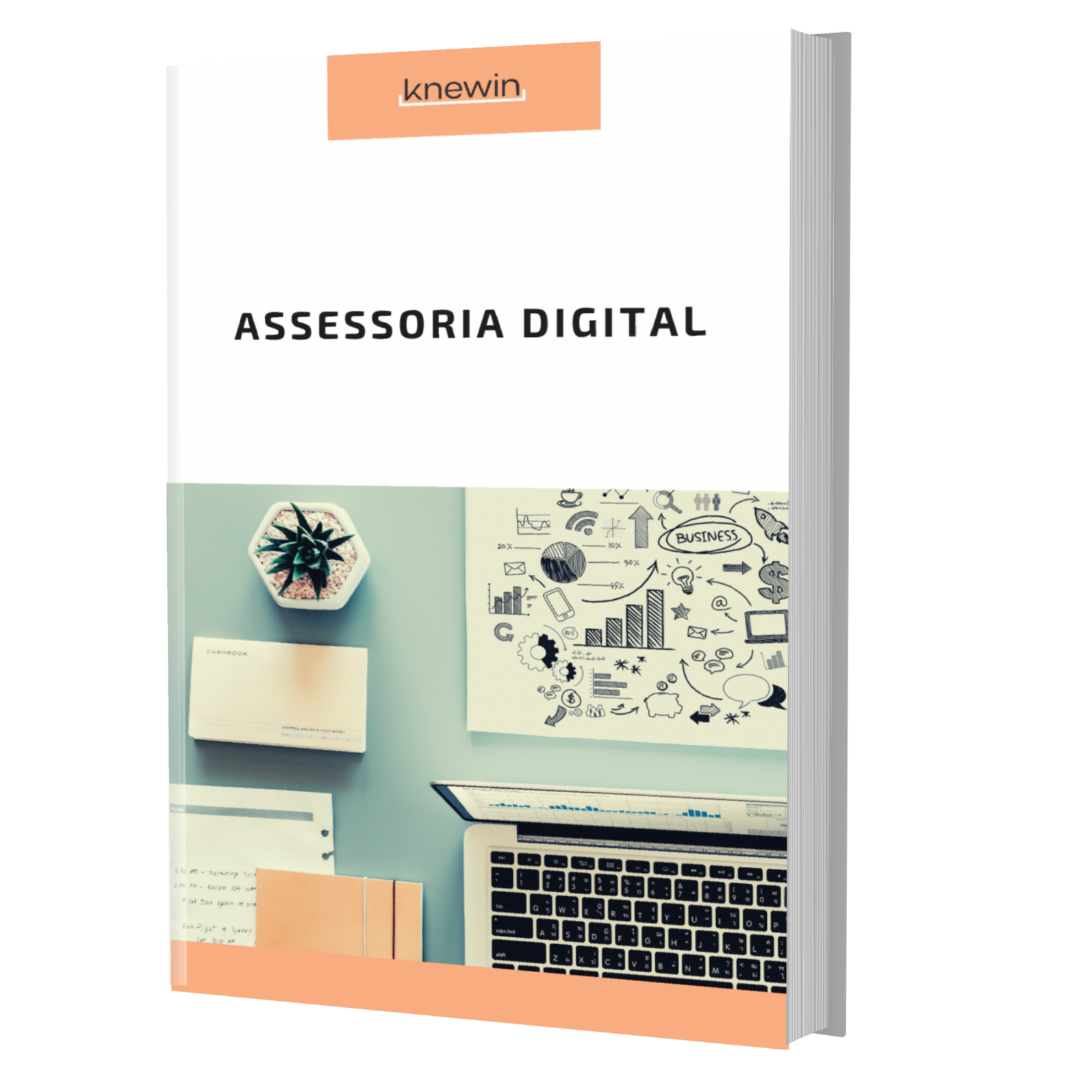 Categoria assessoria digital